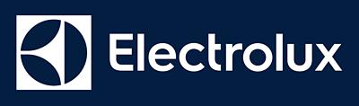 Электрический очаг Электролюкс 2520 в магазине Чистый Воздух Красноярск