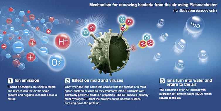 Sharp Plasmaclaster - плазменный генератор с антибактериальным и противовирусным эффектом